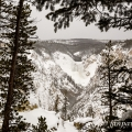 Grand Canyon Yellowstone | fotografie